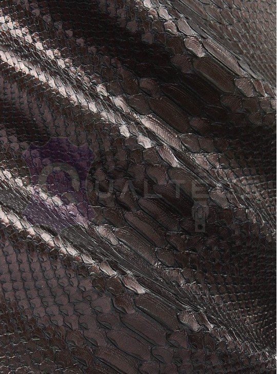 genuine leather Python Curtis | Color: Black (Lacquer)
